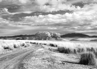 Patagonia San Rafael Valley Grasslands
